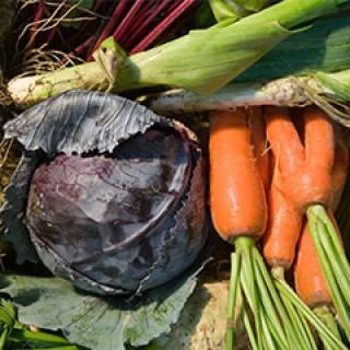 Legumes-Nos-Produits