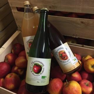 Fruits Nos Produits